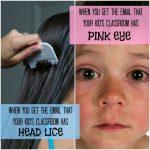 lice babies