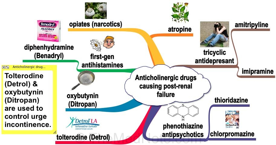 Anticholinergic Drugs Pictures Photos