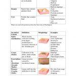 basuk dermatology