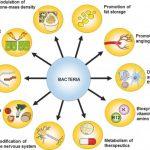 skin diseases in human