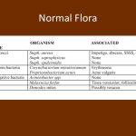 mixed skin flora